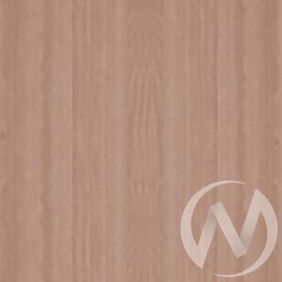 Шкаф-купе «Жаклин» 2-х дверный стекло матовое (ясень шимо темный/ясень шимо темный)